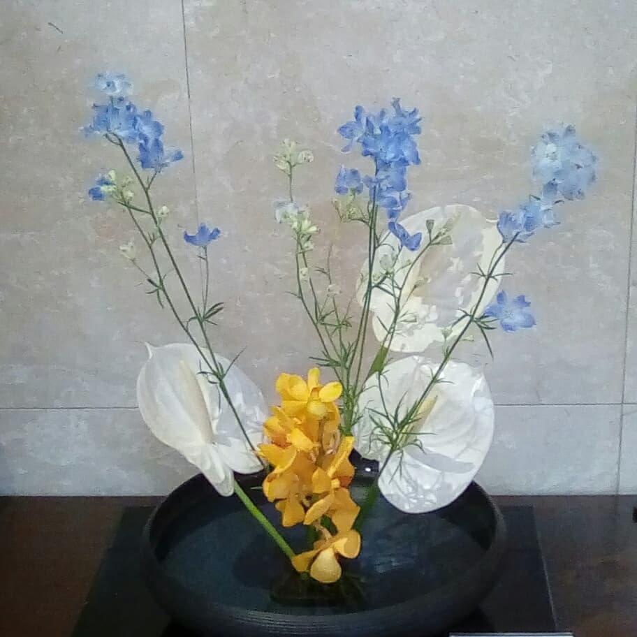 2021717お花